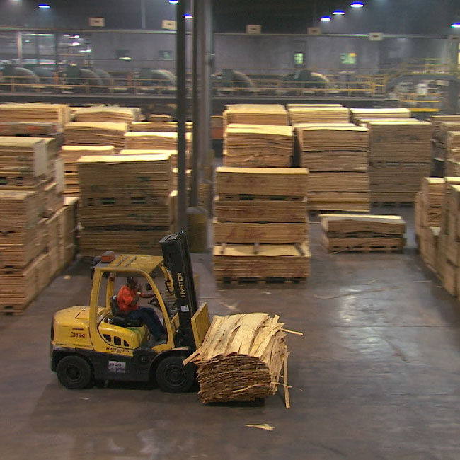 The employees of RoyOMartin, manufacturer of oriented strand board, plywood and more, is its most valuable resource